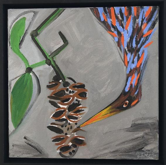 16. Wattle Bird