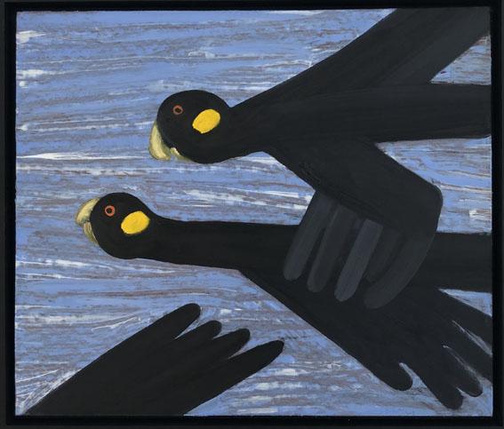17. Black Cockatoos