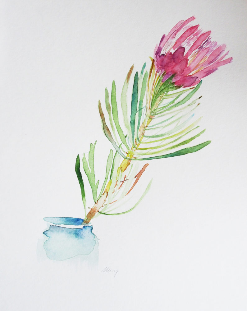 8. Mini Protea
